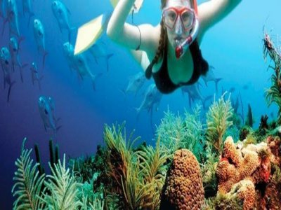 Salida de snorkel por Tarifa