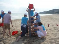 Lavoro di squadra sulla spiaggia