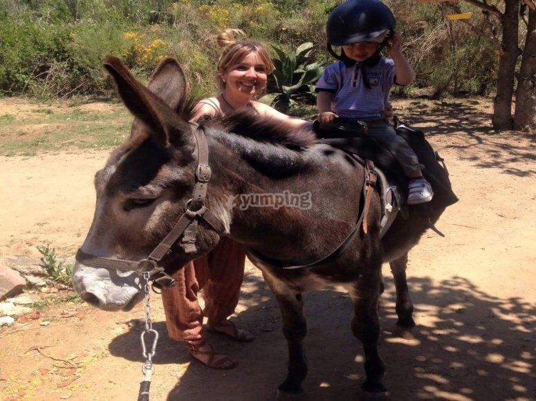 Peque骑在驴