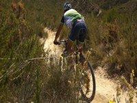 escursioni guidate in bici