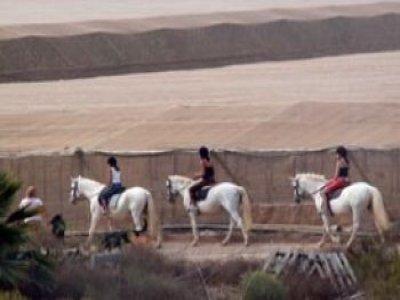 Adrenaline Sport Holidays Rutas a Caballo