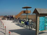 BTT Delta Ebro公园自然和成人食物