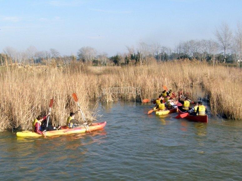 Embarcaciones en el Ebro