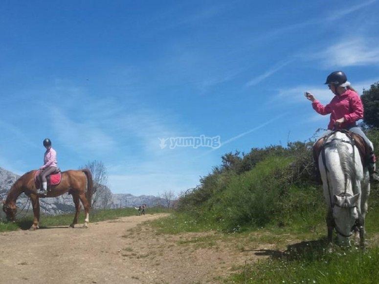 Haciendo una foto al caballo