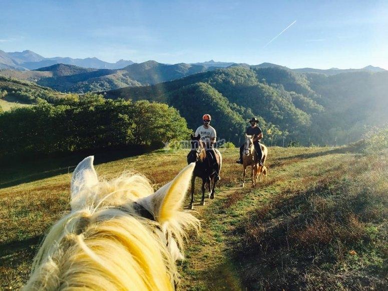Viendo los verdes paisajes desde el caballo