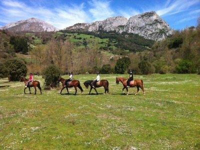 Horse-riding route at Picos de Europa, 3h