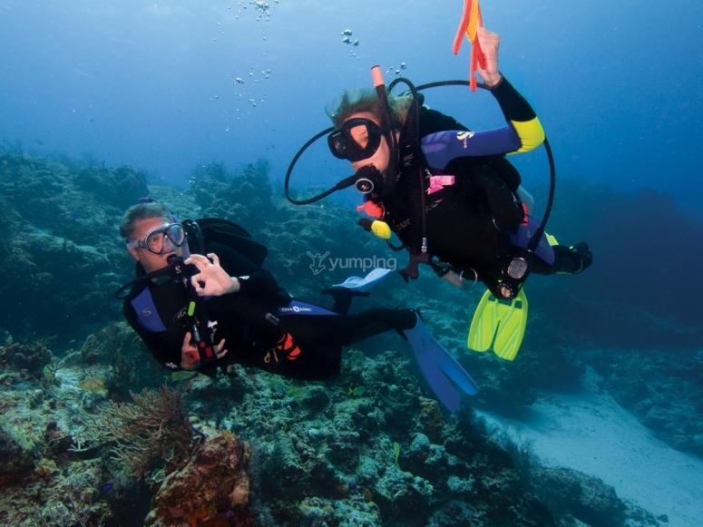 bellos fondos marinos