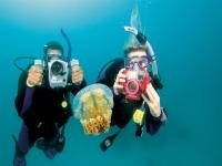 Bautismo de buceo en mar Hondarribia