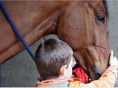 在哈卡的骑马洗礼1小时