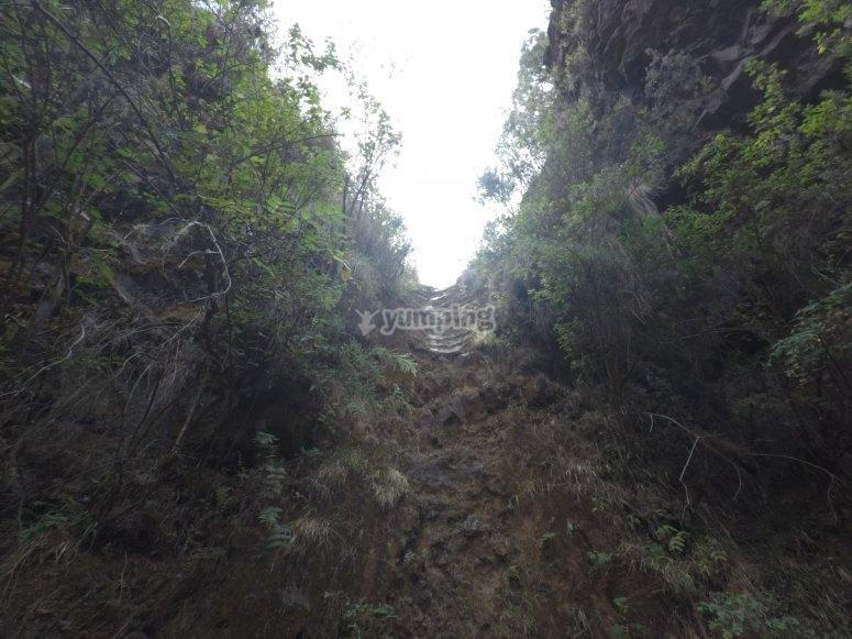 特内里费岛的Barranco de Chimoche