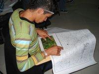 chico mirando un mapa