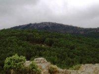 Monte de la región