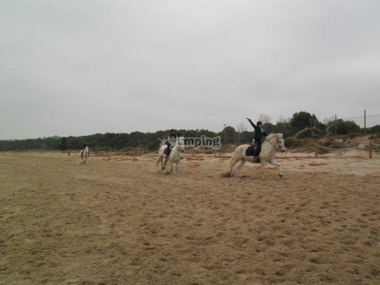 Corriendo con los caballos en la arena