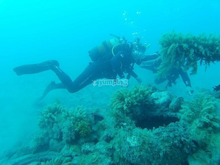 探索兰萨罗特海底