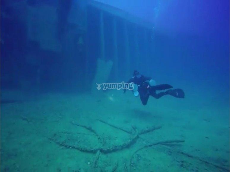 Clase de inmersión de buceo