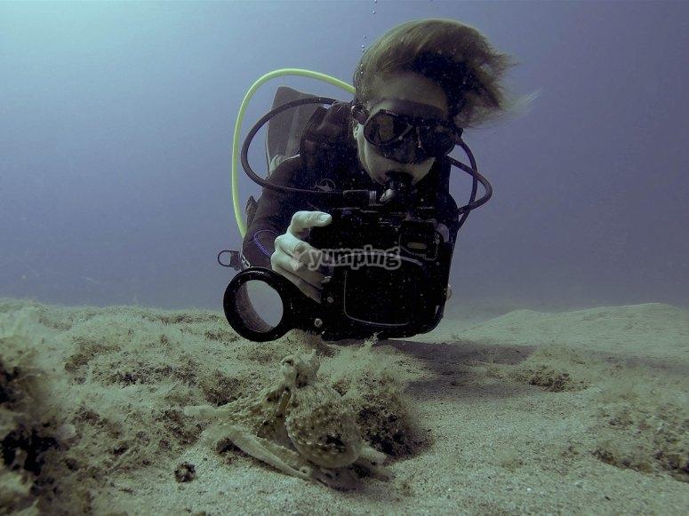 Fotografia subacuatica