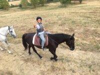 Nuestro jinete sobre el caballo