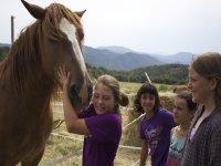 Cuidando a los caballos