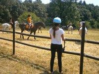 Compañeros montando a caballo