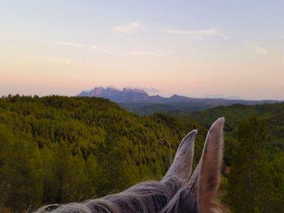 在牧场的一天,骑马的私人路线