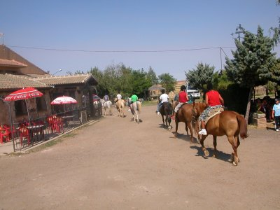 Horse ride 2h, archery and lunch Grajera