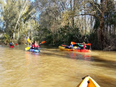 Multi-adventure activities at Aljarafe Doñana