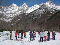Grupo en esqui de fondo