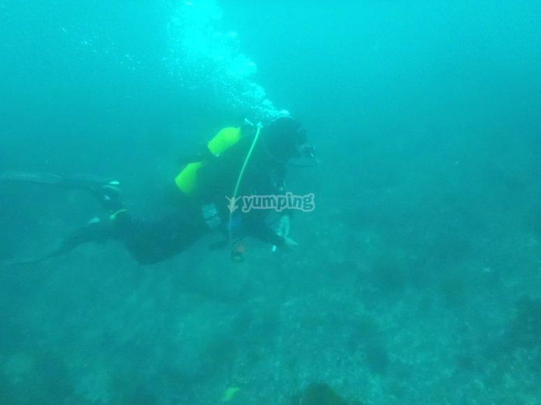 加利西亚海