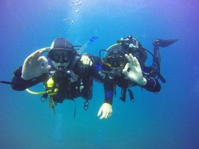 使用潜水设备在 Cabo Tiñoso 潜水