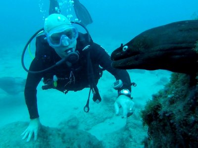 10 diving sessions for titled ones in Tenerife