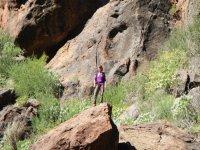 Posando sobre una roca
