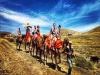 Percorso in cammello