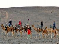 Giro in cammello in Timanfaya