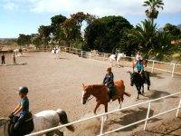 Equitacion infantil en pista