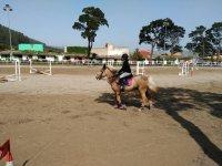 Pista de obstaculos a caballo