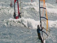 several people at sea practicing windsurfing