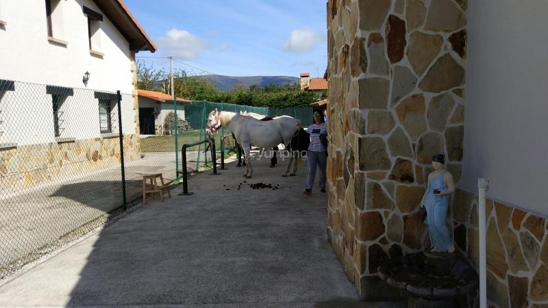 res_o-38333-rutas-a-caballo_de_jose-ignacio-grijalbo-herrero_15044651805027.jpg