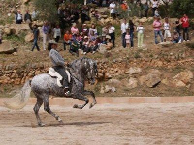 La Doma Mallorca