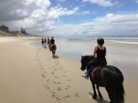 Paseos a caballo por la playa