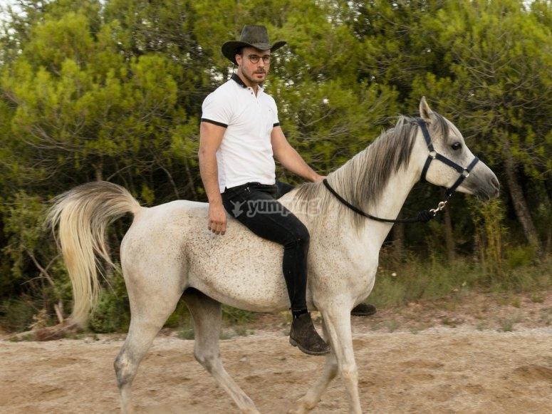 Cavalcare il cavallo naturale