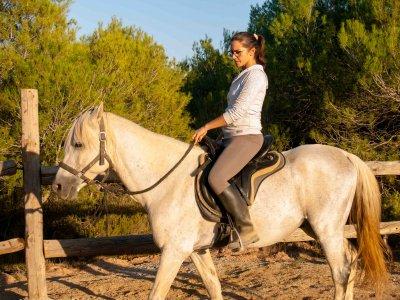骑马曼雷萨自然驯服的私人经验