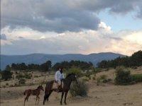 Excursion con el caballo y un potrillo