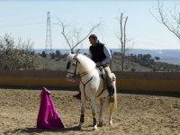 Jinete a caballo y capote