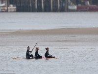 Paddle surf en Barcelona