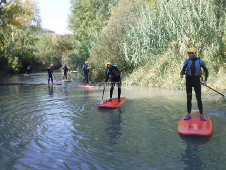 De pie sobre las tablas de paddle surf