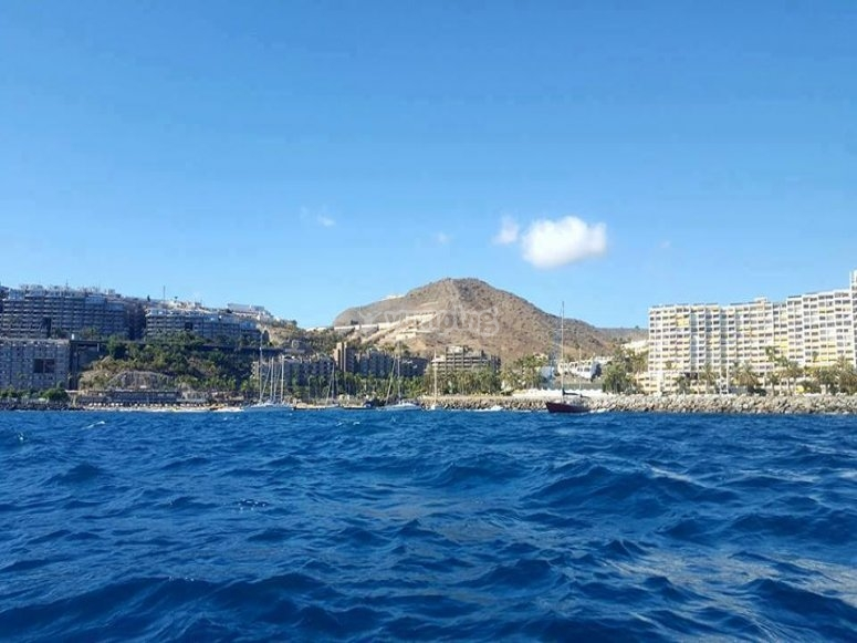 panoramica del puerto