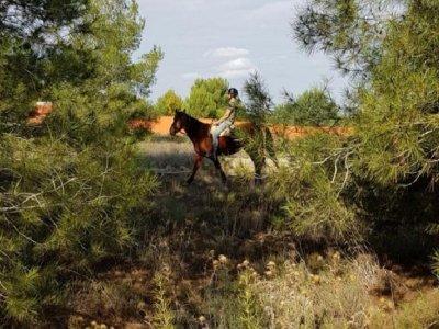 Ruta a caballo al Paraje Natural de Les Rodanes