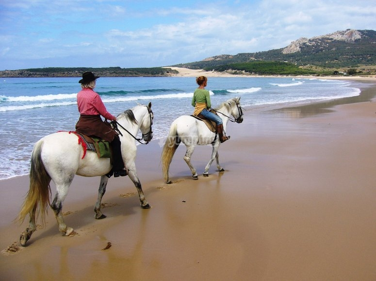 Horse riding route through the beach