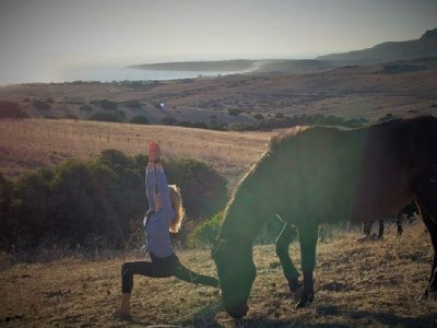塔里法7日游马和瑜伽路线