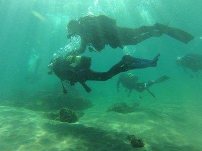 Nemo Divers Buceo